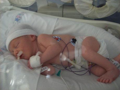 imagenes de bebes de 36 semanas de gestacion