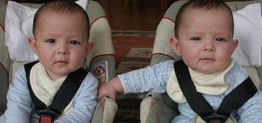 convivir con gemelos