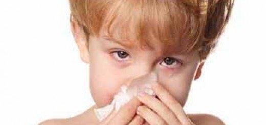 especial alergias